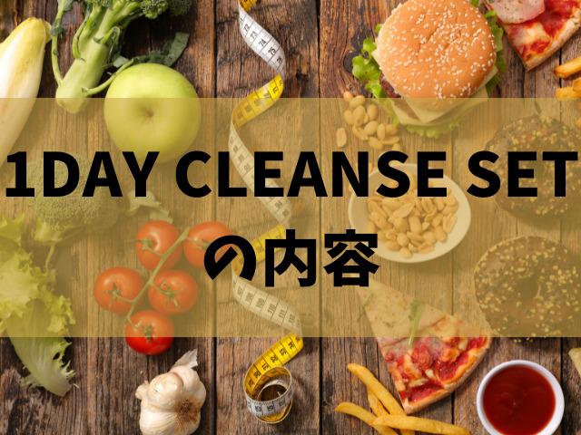 1DAY CLEANSE SET 内容