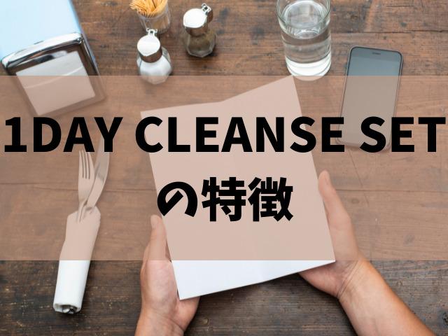 1DAY CLEANSE SET 特徴